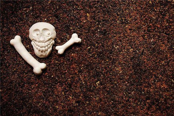O significado e o símbolo dos sonhos de ossos